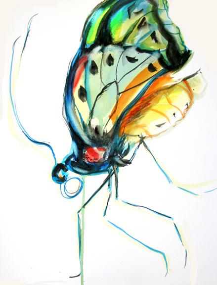 bbutterfly copy