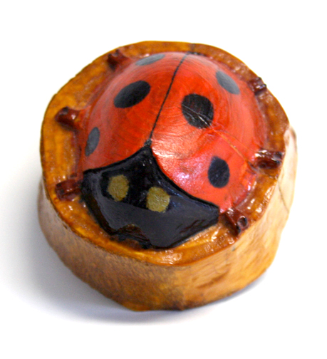 lady bug copy